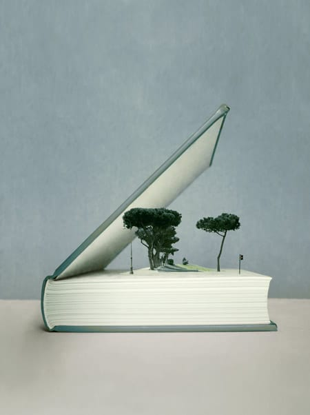 Writing-Services-Trees-Growing-in-Book